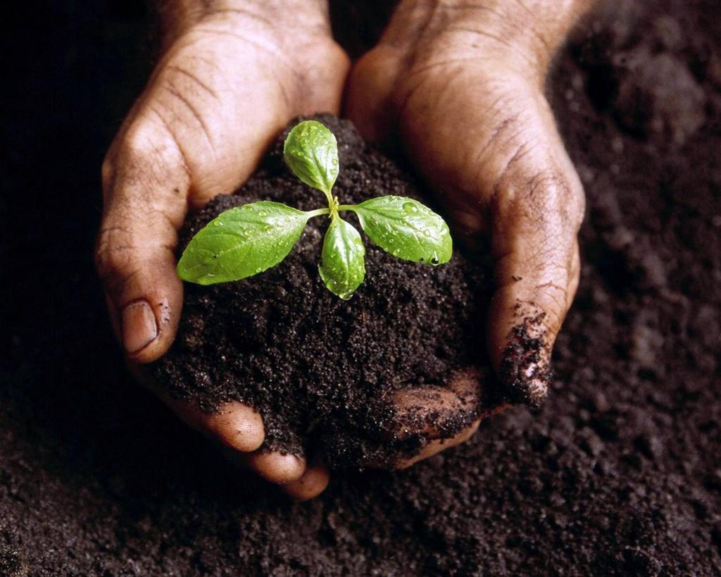 Bir Avuç Toprak – Permakültür Tasarım Kursu/ Emet Değirmenci/ Yeryüzü Derneği/ Biovacık